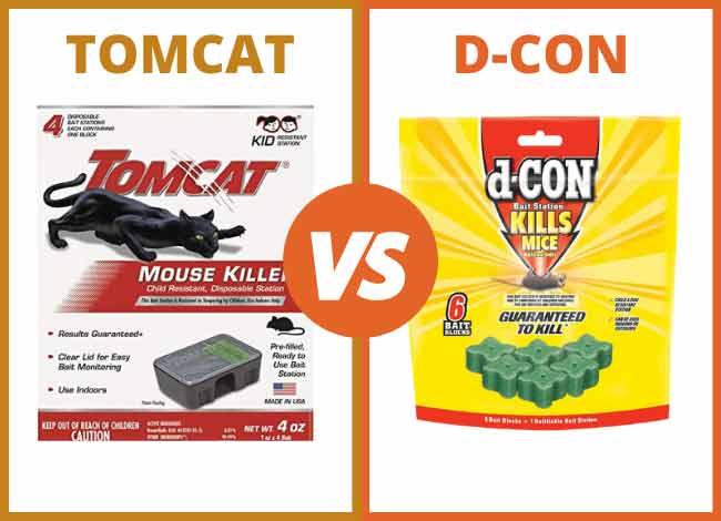 Tomcat vs Dcon